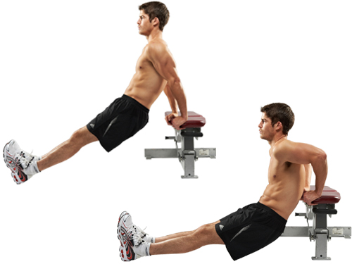 bench-dips-exercicio-para-definir-o-triceps.jpg