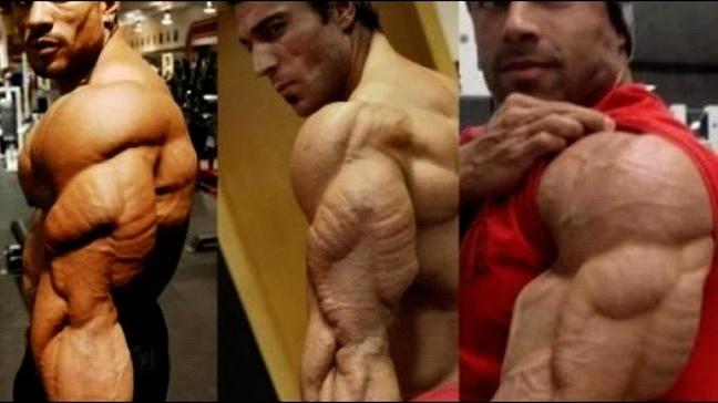 Best-Triceps.jpg