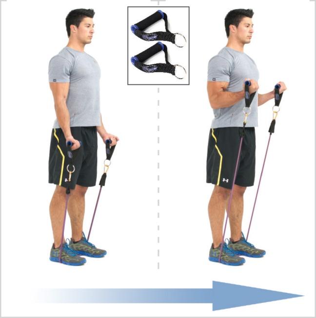 standing-biceps-curl.jpg